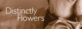 Distinctly Flowers Logo